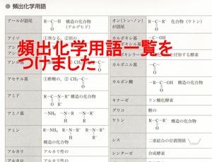 asakura41.jpg
